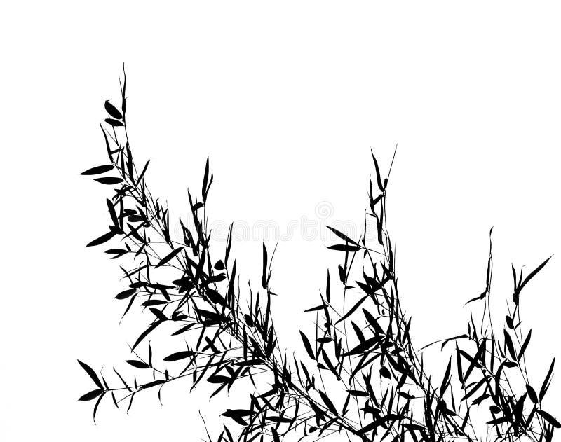 Het bamboe gaat weg en vertakt zich vector illustratie