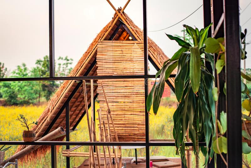 Het bamboe in het landbouwbedrijf royalty-vrije stock afbeeldingen