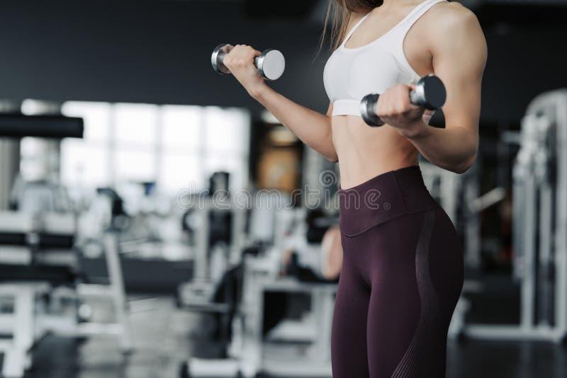 Het bebouwde lichaam dicht van jonge aantrekkelijke vrouw in sport kleedt omhoog het houden van gewichtsdomoor die fitness traini stock afbeeldingen