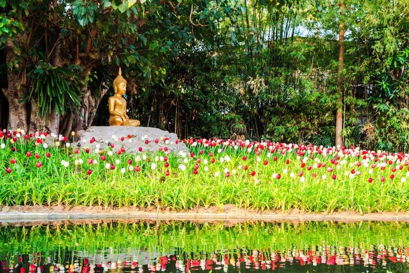 Download Het Beeld Van Boedha Onder De Bodhiboom Stock Afbeelding - Afbeelding bestaande uit boedha, rood: 29513147