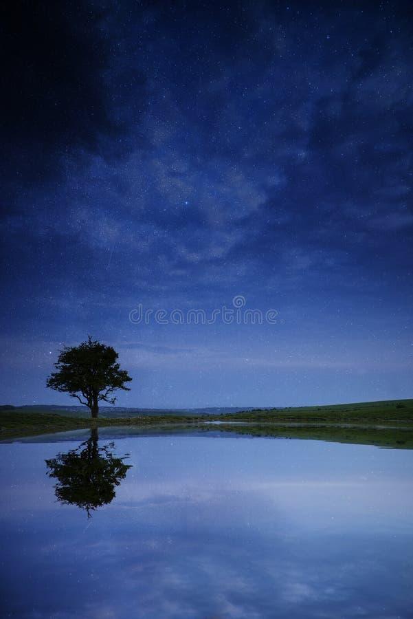Het beeld van de melkwegmelkweg van nachthemel met natuurlijk boomsilhouet royalty-vrije stock afbeeldingen