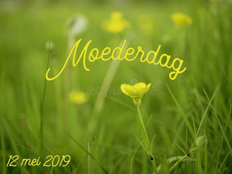 Het beeld van de moedersdag met het woord moederdag in het Nederlands met gele bloemen stock foto