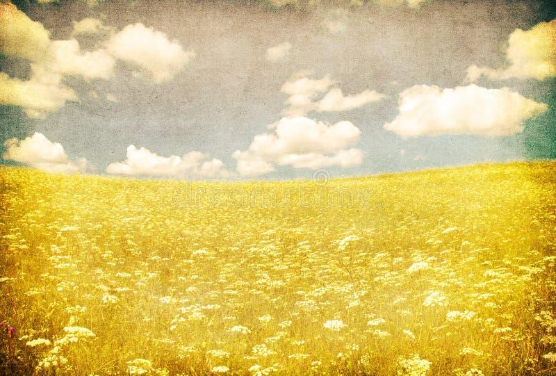 Het beeld van Grunge van groen gebied en blauwe hemel vector illustratie