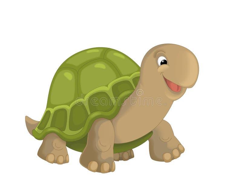 Het beeldverhaal - schildpad - illustratie voor de kinderen royalty-vrije illustratie