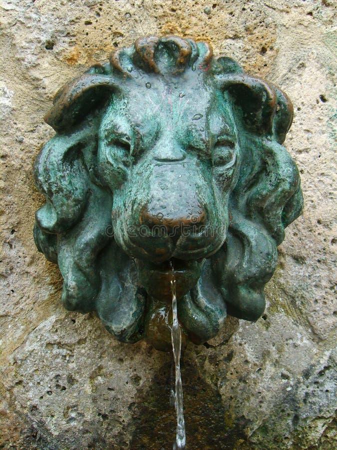 Het beeltenisfontein van de leeuw royalty-vrije stock foto's
