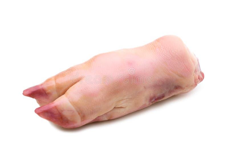 Het been van het varkensvlees royalty-vrije stock afbeelding
