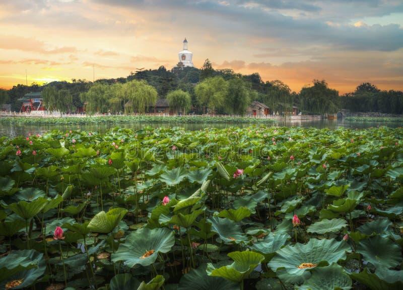 Het Beihaipark is een keizertuin stock afbeelding