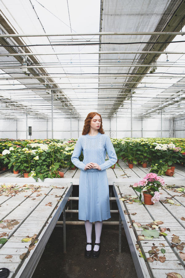 Het bekijken bloemen bij lijsten royalty-vrije stock afbeeldingen