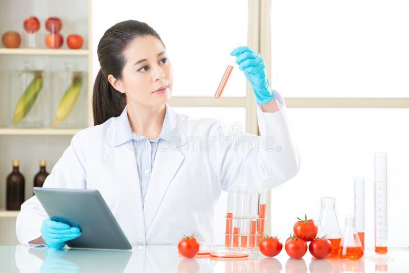 Het bekijken laboratoriumbuis en vindt het antwoord voor genetische modificatie stock foto's