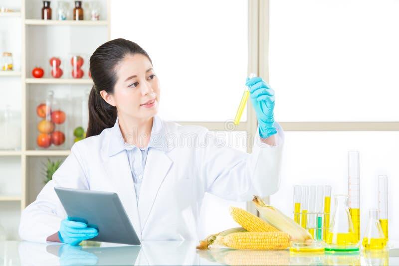 Het bekijken laboratoriumbuis en vindt het antwoord voor genetische modificatie royalty-vrije stock afbeelding
