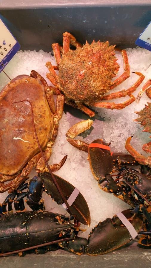 Het bekijken neer kleine inzameling van verse levende krabben en rivierkreeften schikte op verpletterd ijs in markt royalty-vrije stock afbeelding