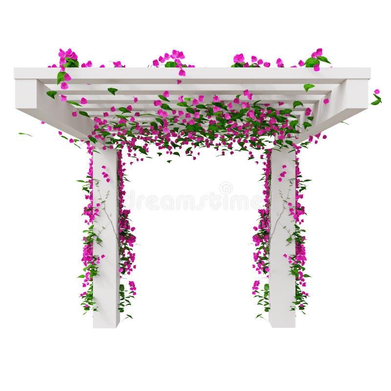 Het beklimmen van bloemen op pergola vector illustratie