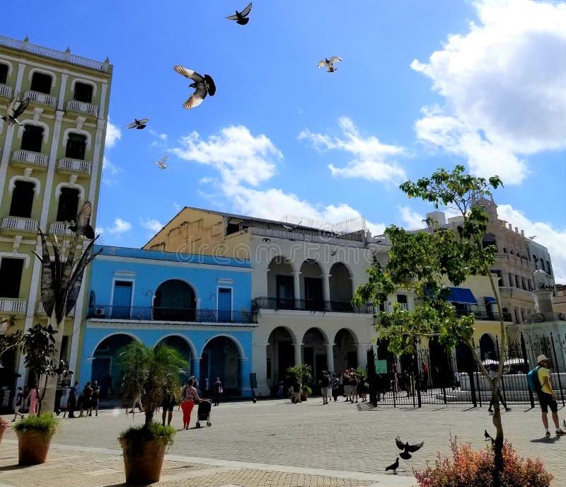 Het benieuwd zijn op de straten van Havana - hoofdvierkant van oude stad stock afbeelding