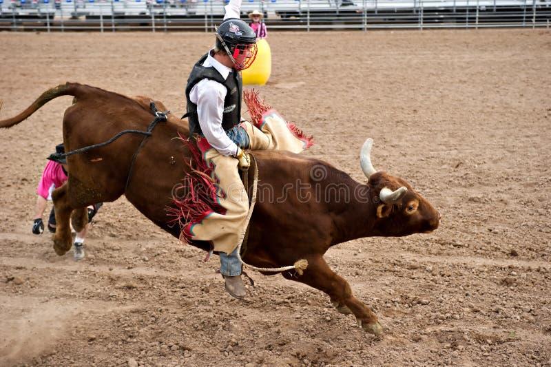 Het berijden van de stier royalty-vrije stock foto's