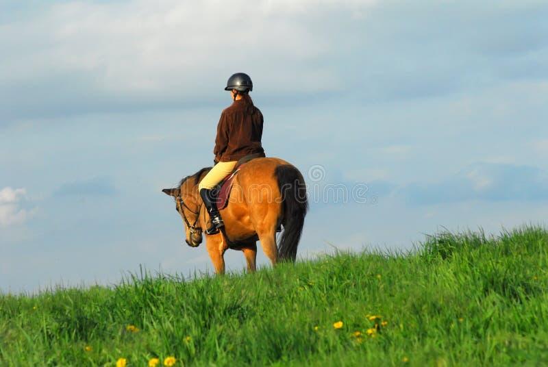 Het berijden van de vrouw paard royalty-vrije stock foto