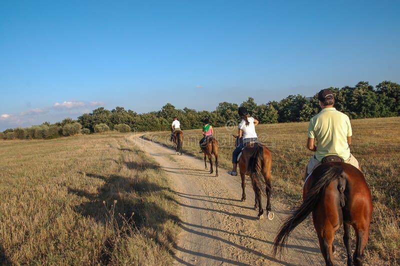 Het berijden van een paard in de vakantie van Toscanië, Italië stock afbeelding