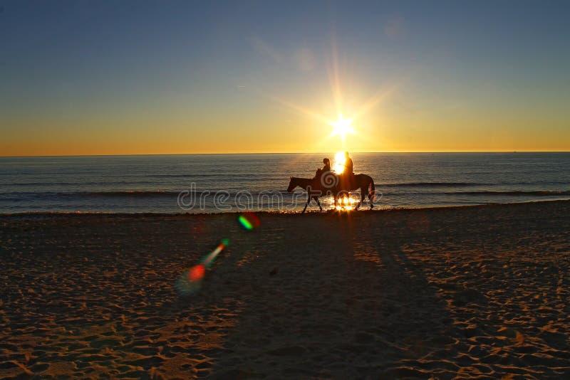 Het berijden van paarden op het strand tijdens zonsondergang royalty-vrije stock afbeelding