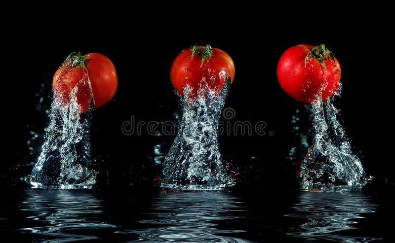 Het bespatten van de tomaat uit water stock foto
