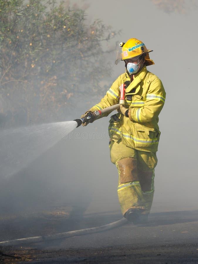 Het bespuitende water van de brandvechter op een struikbrand op een gebied in de voorsteden van Knox City in het oosten van Melbo stock foto's