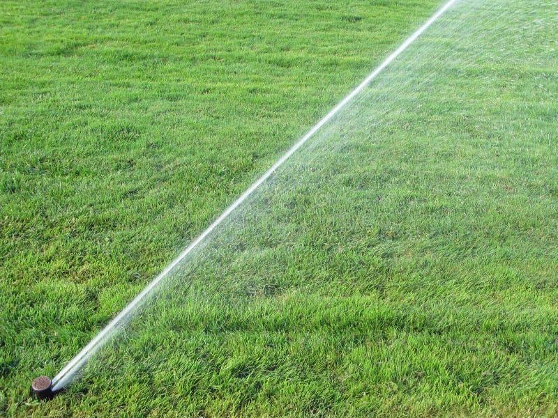 Het bespuitende water van de sproeier op gras stock afbeelding