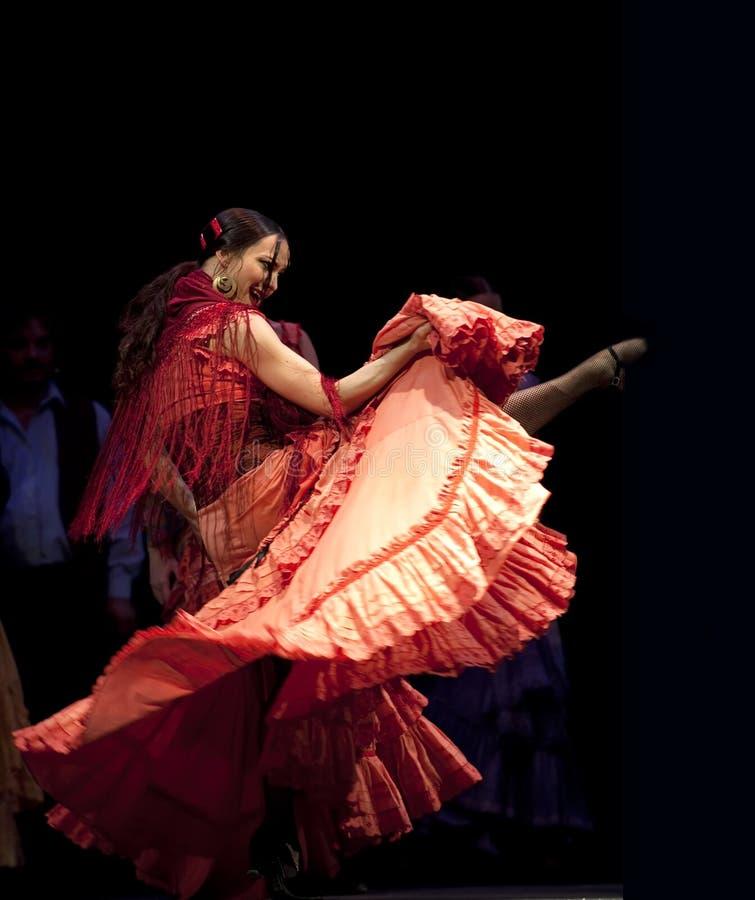 Het beste Drama van de Dans van het Flamenco   stock foto's