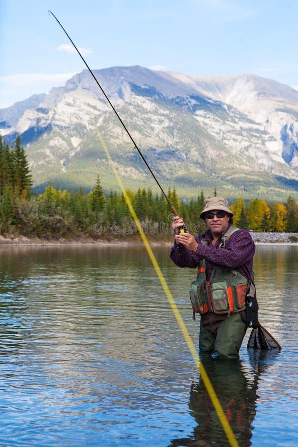 Het bestrijden van een vis royalty-vrije stock foto