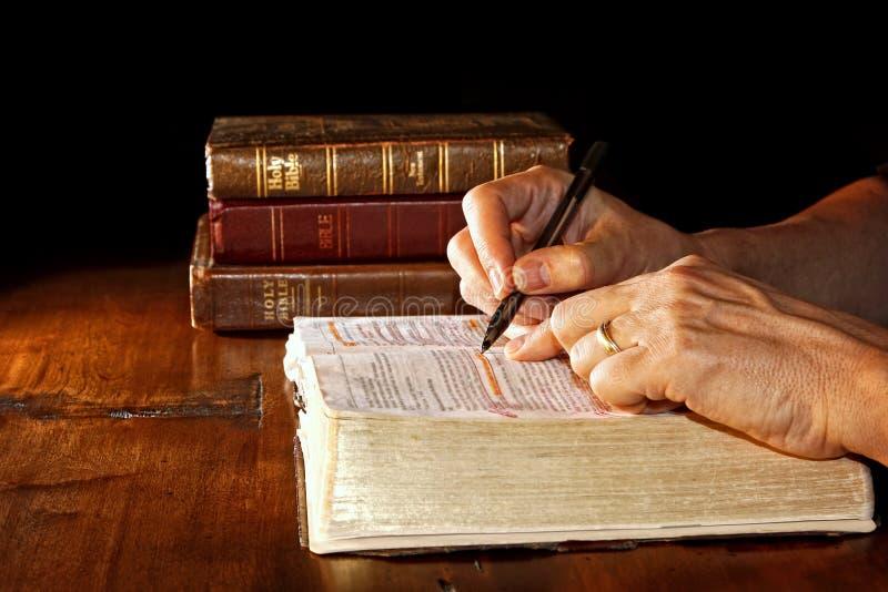 Het bestuderen van de Heilige Bijbel stock afbeelding