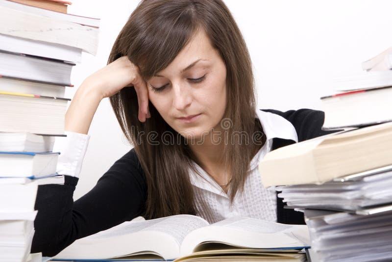 Het bestuderen van meisje stock afbeelding
