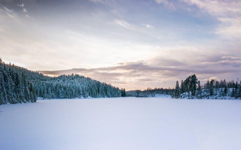 Het bevroren Landschap van het Meer royalty-vrije stock foto