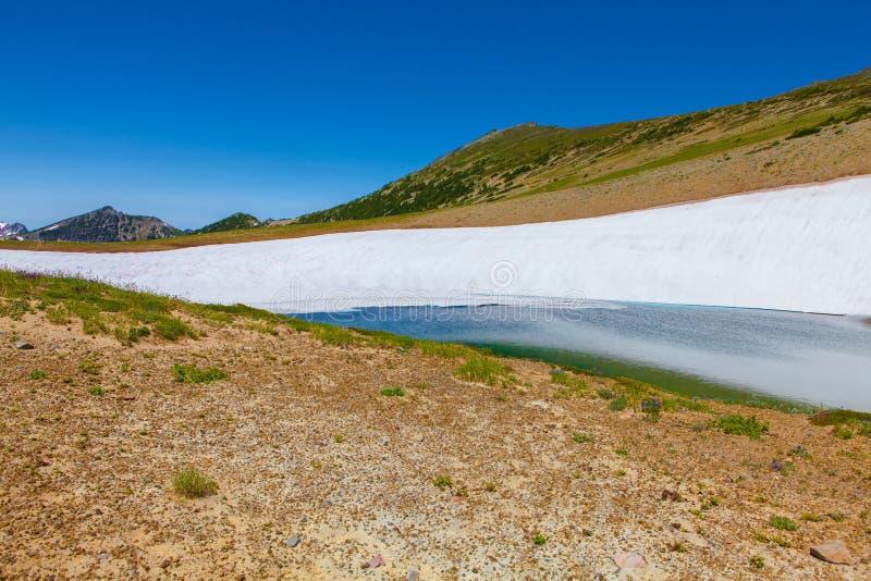Het bevroren meer die zet Rainier National Park op smelten royalty-vrije stock afbeelding