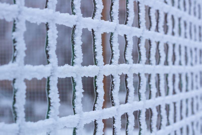 Het bevroren netto die net van het metaalijzer met vorst in de winter wordt behandeld royalty-vrije stock foto's