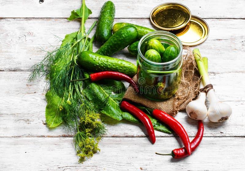 Het bewaren van verse komkommers stock afbeelding