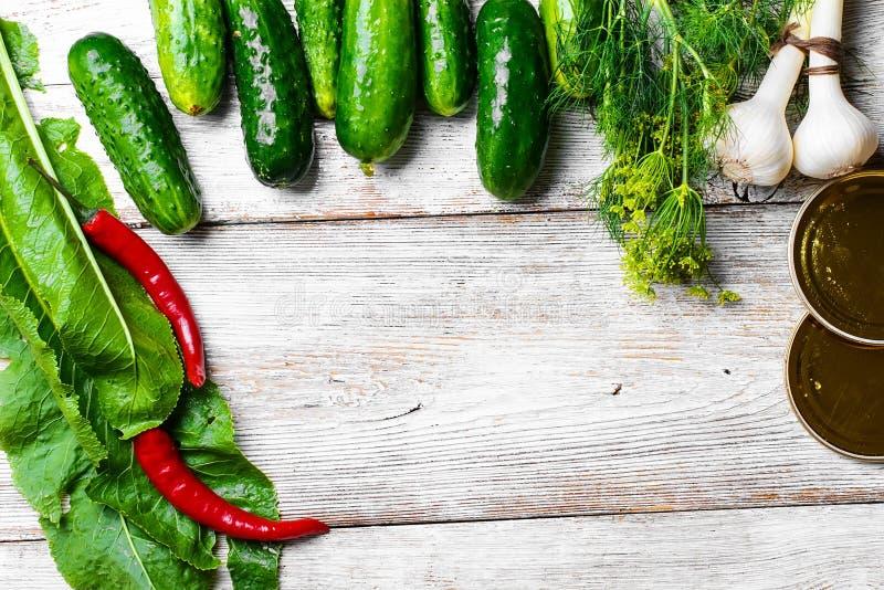 Het bewaren van verse komkommers stock afbeeldingen