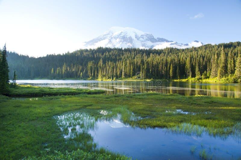 Het bezinningsmeer en zet Ranier-vulkaan op stock fotografie