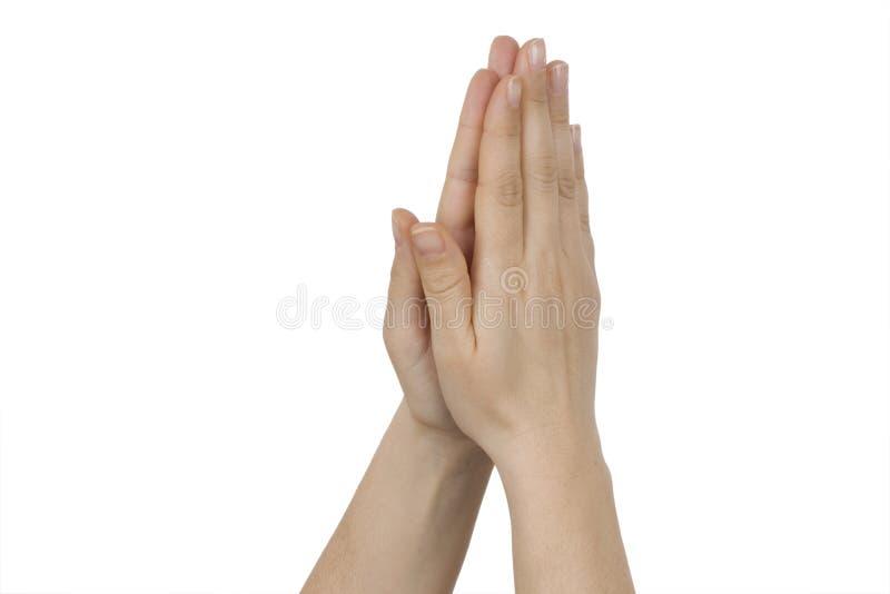 Het bidden van de hand stock afbeelding