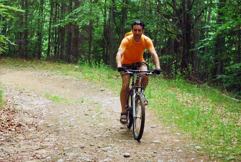 Het biking van de berg royalty-vrije stock afbeeldingen