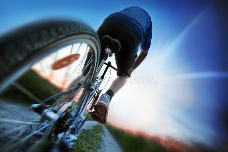 Het biking van de berg stock foto