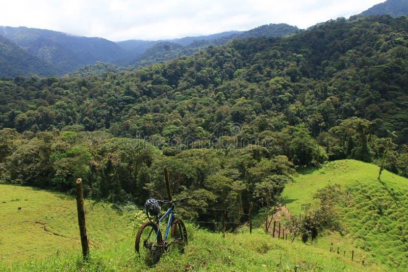 Het biking van de berg royalty-vrije stock foto's