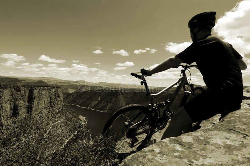 Het biking van de berg royalty-vrije stock fotografie