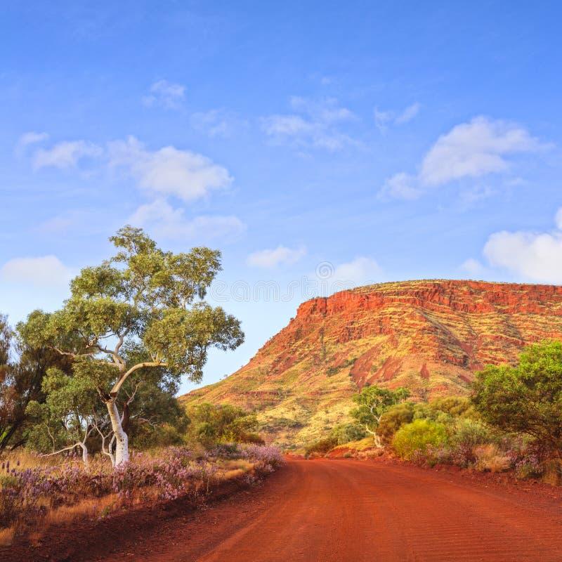 Het binnenland zet het Naamloze Vierkant van het de Reislandschap van Westelijk Australië op stock fotografie