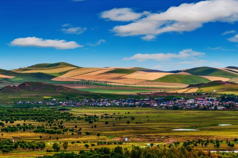 Het binnenlandschap van Mongolië stock afbeelding