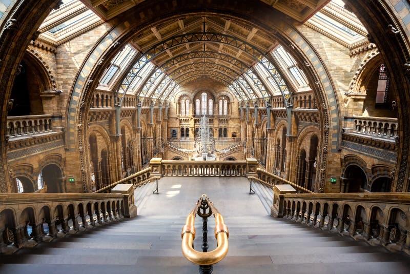 Het Biologiemuseum in Londen, het UK royalty-vrije stock afbeelding