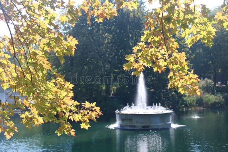 Het blad kleurt Fonteinpark, Montreal royalty-vrije stock afbeeldingen