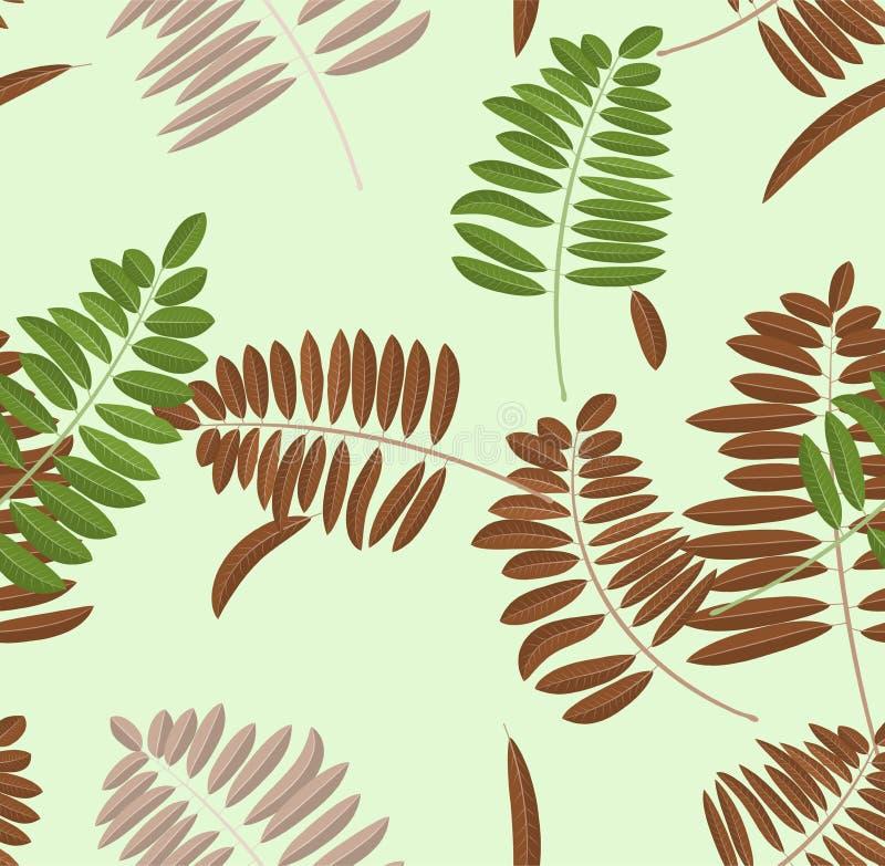 Het blad naadloos patroon van de de herfstacacia Zachte pastelkleur lichtgroene achtergrond en bank met groen, broun en gele blad stock illustratie