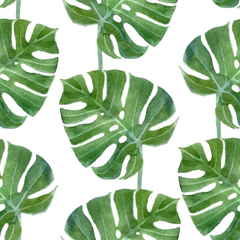 Het blad naadloos patroon van waterverfmonstera vector illustratie