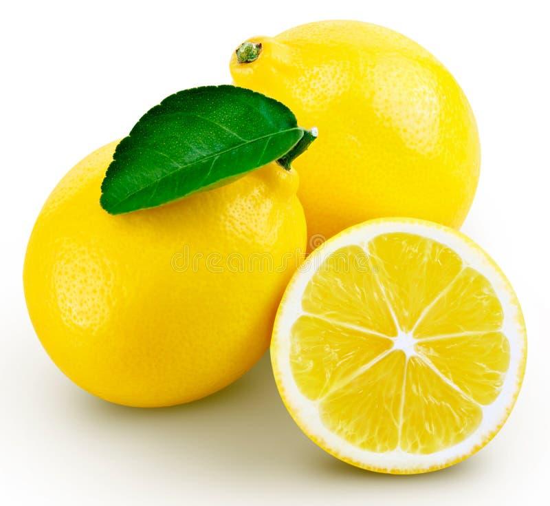Het blad van het citroenfruit stock foto