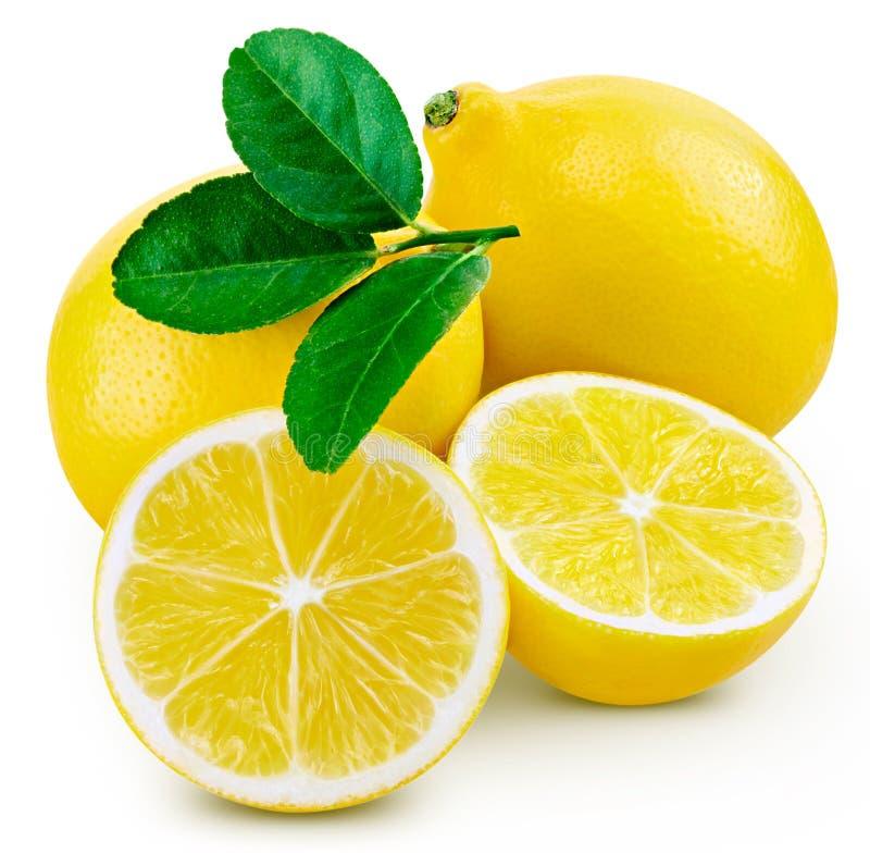 Het blad van het citroenfruit royalty-vrije stock foto's