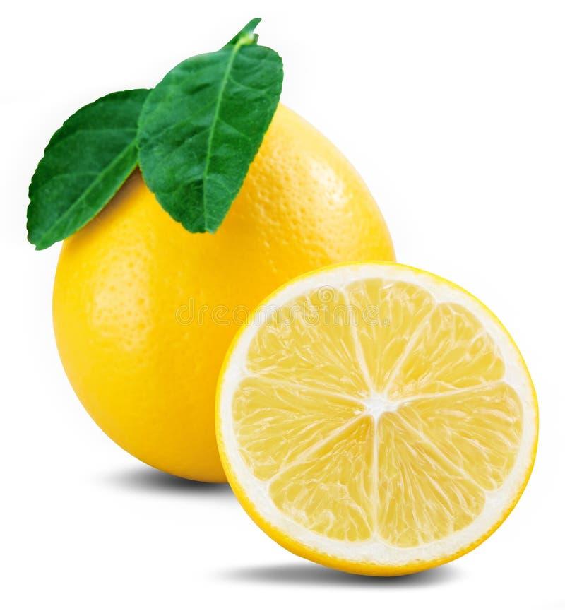 Het blad van het citroenfruit stock afbeelding