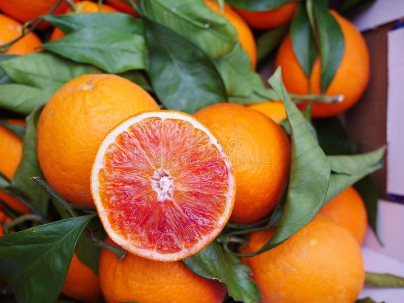Het blad van de bloedsinaasappel stock fotografie