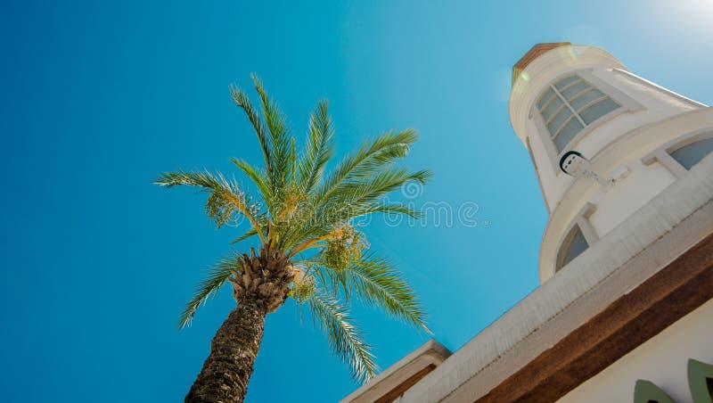 Het blad van de groene palm naast vuurtoren tegen hemelachtergrond Mening van neer aan omhoog stock afbeelding